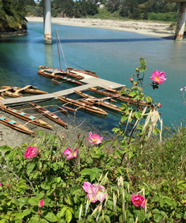 redwood outriggers
